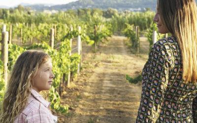 Le nouveau Sunset de Maison Rivier avec un Défilé de Mode au Milieu des Vignes !